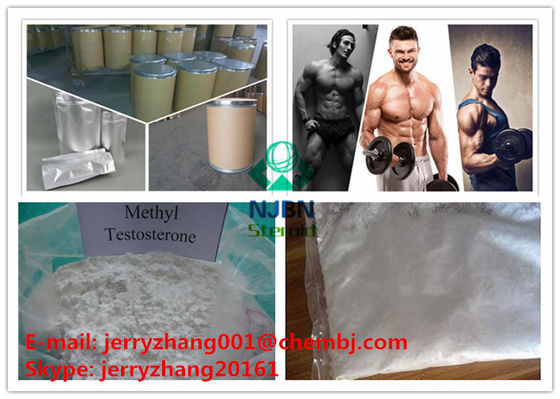 China Safe Pure Anabolic Steroids Methyltestosterone For Muscle Building ISO 9001 supplier