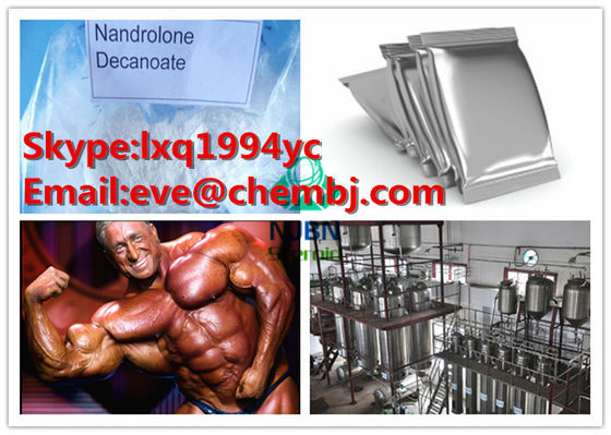 China 360-70-3 Injecting Synthetic Anabolic Steroids White Nandrolone Decanoate Powder supplier