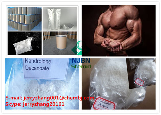 China Nandrolone Decanoate Prohormone Steroids Muscle Gain Steroid CAS 360-70-3 supplier