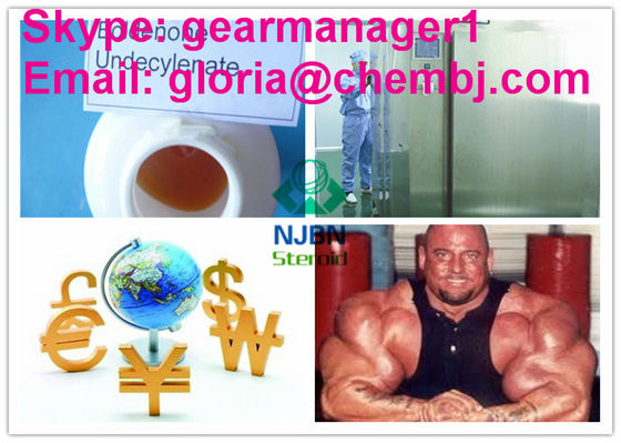 China EQ Steroid Muscle Growth Steroids Boldenone Undecylenate / Equipoise 13103-34-9 supplier