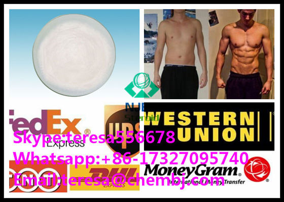 China Dutasteride Hair Loss Medicine 164656-23-9 Women / Men Hair Loss Treatment Powder supplier
