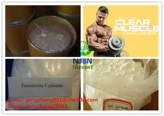 China Testosterone Cypionate Steroid CAS 58-20-8  For Muscle Enhancement supplier