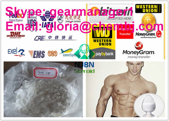 China Safest Pure Injectable Anabolic Steroids Testosterone Cypionate 58-20-8 For Muscle Building supplier