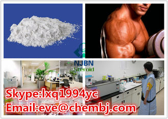 China Turinabol Steroids Testosterone Anabolic Steroid 4-Chlorotestosterone Acetate CAS 855-19-6 supplier