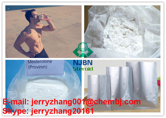 Health Androgenic Anabolic Steroids