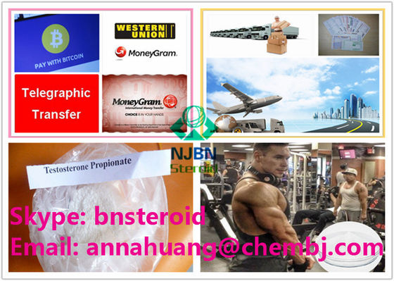 China CAS 57-85-2 Legal Muscle Building Steroids For Men Testosterone Propionate supplier