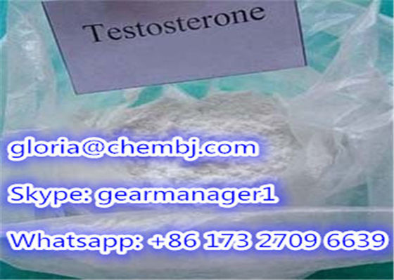 China 98% Min Synthetic Testosterone Anabolic Steroid Powder Testosterone CAS 58-22-0 supplier