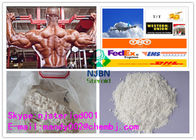 China 99.8% Testosterone Anabolic Steroid Phenylpropionate Testolent 1255-49-8 Pure Positive factory
