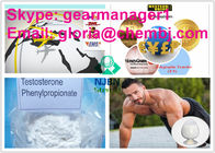 99% Min Pure Powder Testosterone Phenylpropionate 1255-49-8 For Bodybuilding