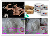 China Yellow Crystal Powder Anabolic Steroids Treatment 10161-34-9 Trenbolone Acetate company