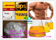 Muscle Building Injectable Anabolic Steroids Trenbolone Base CAS 10161-33-8