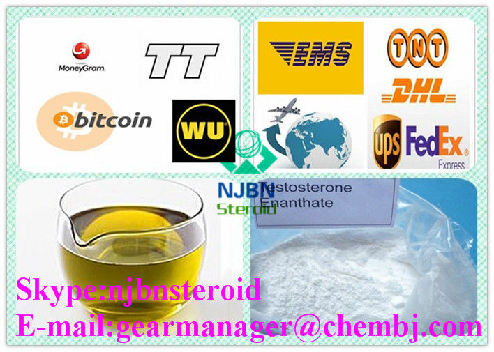 CAS 315-37-7 Injectable Anabolic Steroids Testosterone Enanthate 250mg/ml