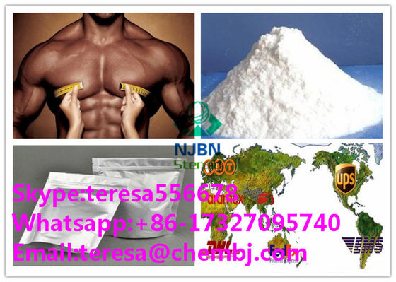 CAS 51-48-9 Fat Burner Muscle Growth Steroids L-thyroxine T4 Purity 99%