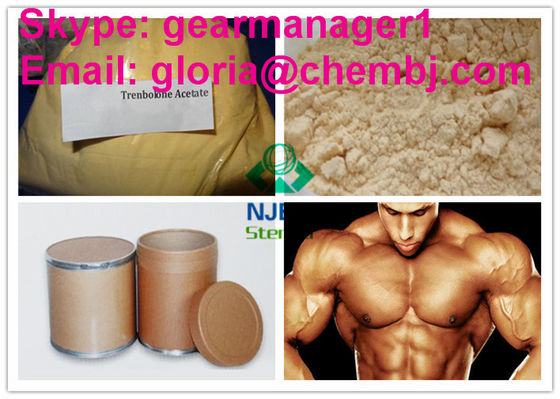 Yellow Crystalline Raw Steroid Powders Trenbolone Acetate 10161-34-9 High Purity
